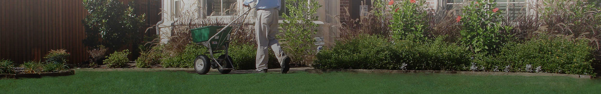 about us: Weedex Lawn Care