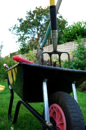 a dark green wheel barrow with compost, a pitch fork and shovel to top dress a lawn